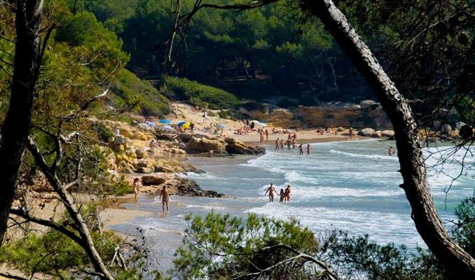 Cala Roca Plana, platja, Tarragona, Tarragonès, Camp de Tarragona, Entorn