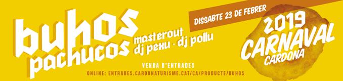 Carnaval Cardona 2019