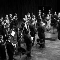 concert_orquestra_cambra_catalana