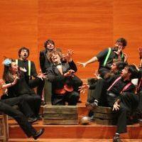 El carnaval dels animals, LleidArt Ensemble