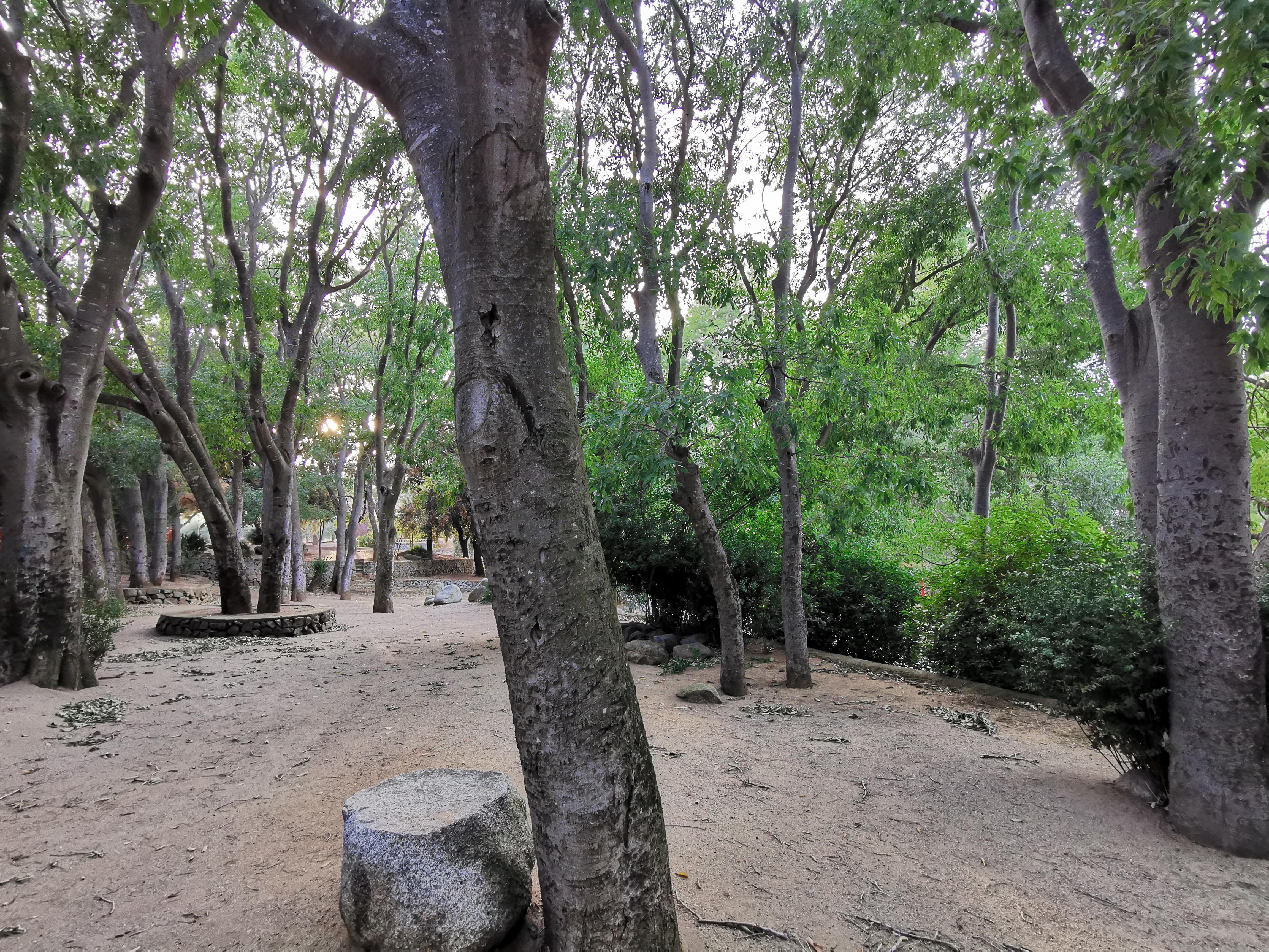 Parc de les Glaneres