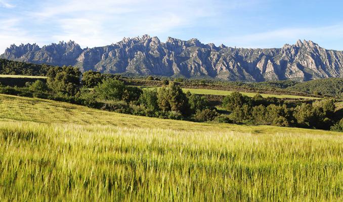 Descobreix com eren els voltants de Montserrat fa 12 milions d'anys