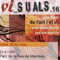 Vi_suals.16