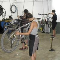 Vols conèixer a fons la teva bicicleta?