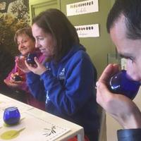 Les oliveres d'ara i d'abans, una pràctica d'oleoturisme al Bages
