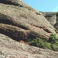 Visita guiada 'Geologia i formació del Montcau'