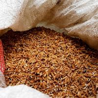 Recull de receptes d'arròs