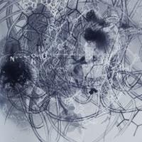 Exposició 'Una tropa de sensaciones errantes', de Jo Milne