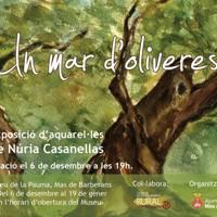Exposició 'Un mar d'oliveres', de Núria Casanellas