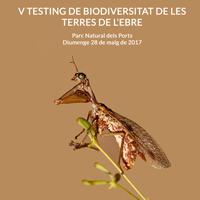 V Testing de Biodiversitat de les Terres de l'Ebre - 2017