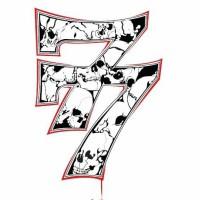 7 notas 7 colores, concert, rap, Boite, Lleida, Segrià, març, 2017, Surtdecasa Ponent