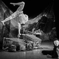 Espectacle 'All genius all idiot' de Svalbard Company