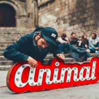 concert, Animal, Slàvia, Garrigues, Les Borges Blanques, música, Surtdecasa Ponent, 2016