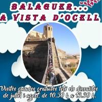 Balaguer... a vista d'ocell