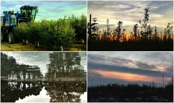 instagram, fotografies, cap de setmana, art, paisatge, Surtdecasa Ponent, novembre, 2016