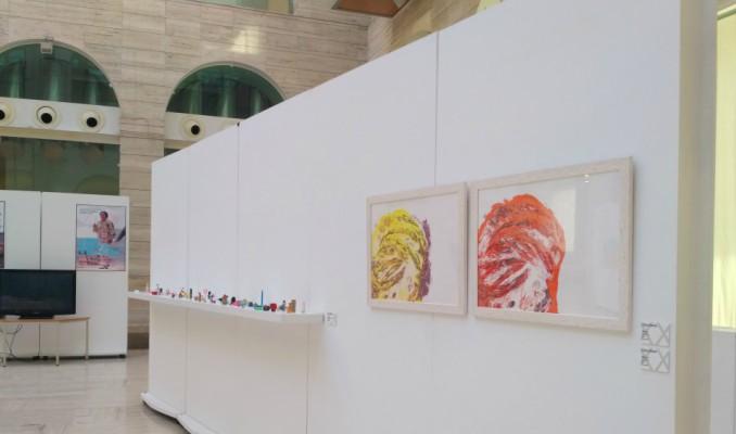 exposició, XX Biennal d'Art Contemporani Català, Biblioteca Pública de Lleida, Segrià, 2017, Surtdecasa Ponent