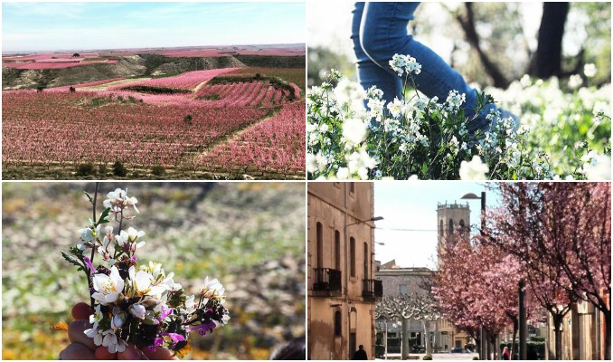 instagram, fotografies, ponent, cap de setmana, Surtdecasa Ponent, març, 2017