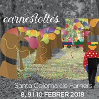 Carnaval - Santa Coloma de Farners 2018