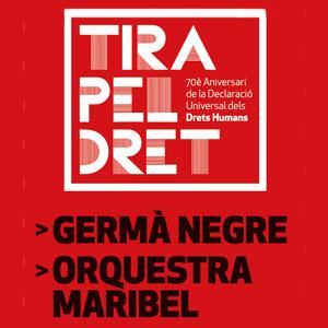 Concert Solidari 'Tira pel dret'