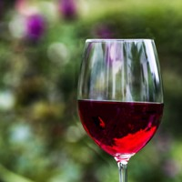 copa de vi