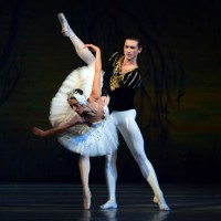 El llag dels cisnes, ballet, espectacle, dansa, Cervera, gener, 2017, Surtdecasa Ponent
