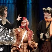 Els músics de Bremen in concert - Cia. Pot de Teatre