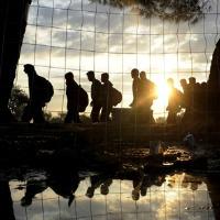 Els refugiats i el Dret d'asil