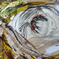 Exposició 'Arrelats' de Jordi Morera