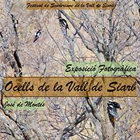 Cartell de l'exposició Fotogràfica 'Ocells de la Vall de Siarb