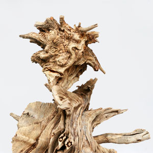 Exposició 'Mitologia i natura' d'Evelí Adam