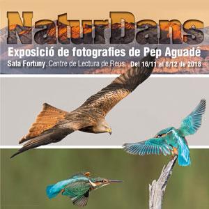 Exposició 'NaturDans' de Pep Aguado