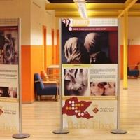 Exposició 'Falsos mites en l'àmbit dels serveis socials'