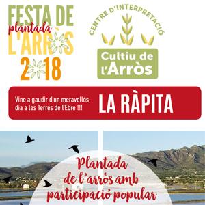 Festa de la Plantada - La Ràpita 2018