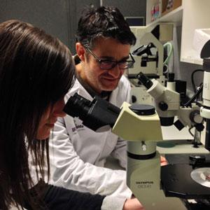 Institut de Recerca Biomèdica de Lleida