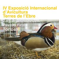 IV Exposició Internacional d'Avicultura Terres de l'Ebre - Tortosa 2016