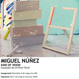 Exposició King of Wood Miguel Núñez
