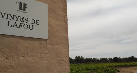 Vinyes de LaFou - Batea