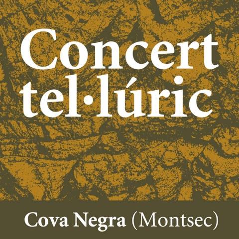 Cartell del 'Concert Tel·lúric' a la Cova Negra