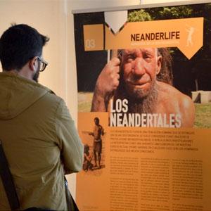 Exposició 'Neanderlife. Moments de la vida neandertal', Reus, 2018
