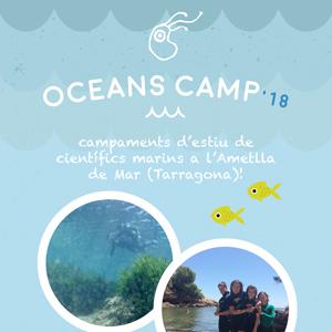 Oceans Camp, campaments d'estiu de científics marins - Plàncton Diving 2018