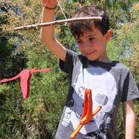 Ocell mòbil - MónNatura Delta de l'Ebre