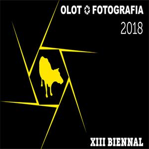 Olot Fotografia, XIII Biennal,