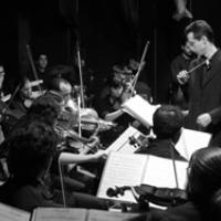 Orquestra Jove de la Selva