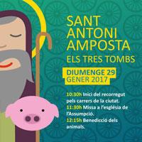 Sant Antoni - Amposta 2017