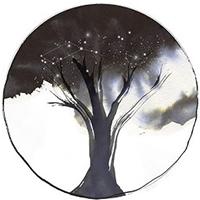El Cicle d'arbres monumentals és una iniciativa que uneix natura i creació