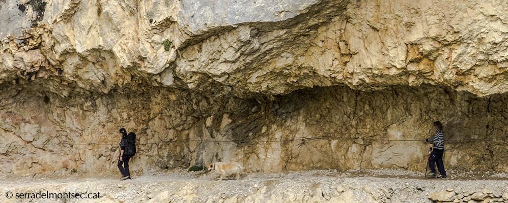 Un tram del congost de Mont-rebei