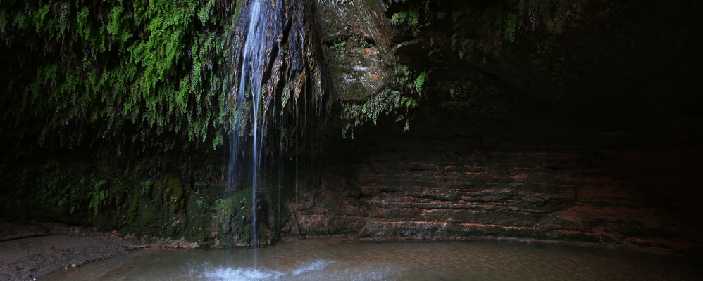 salts d'aigua de Cabrera d'Anoia