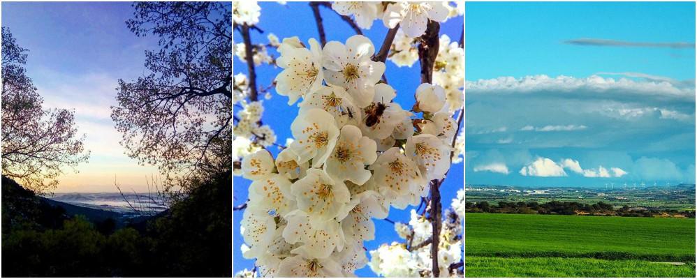 instagram, surtdecasa ponent, fotografies, abril, entorn, natura, cultura, primavera, 2017