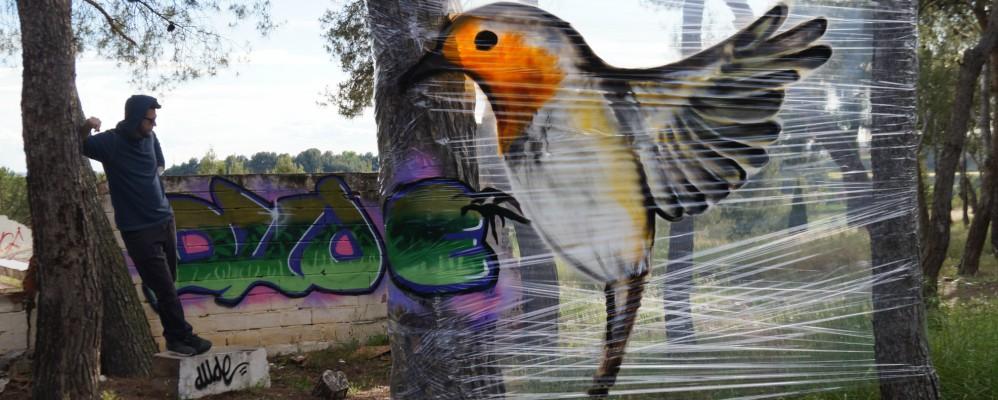 Dude, entrevista, graffiti, cellografiti, Lleida, Surtdecasa Ponent