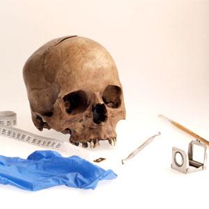 Taller 'Què ens expliquen els ossos?'